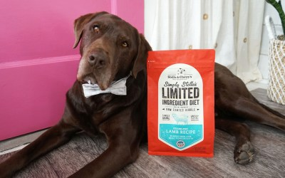 Curious About Stella & Chewy's Limited Ingredient Diet