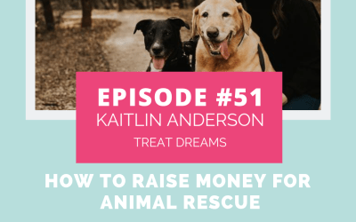 Podcast Episode 51: How to Raise Money for Animal Charities with Kaitlin Anderson of Treat Dreams
