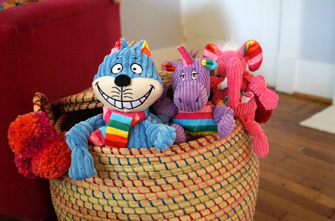 Plush Dog Toys for Tough Chewers and Snugglers