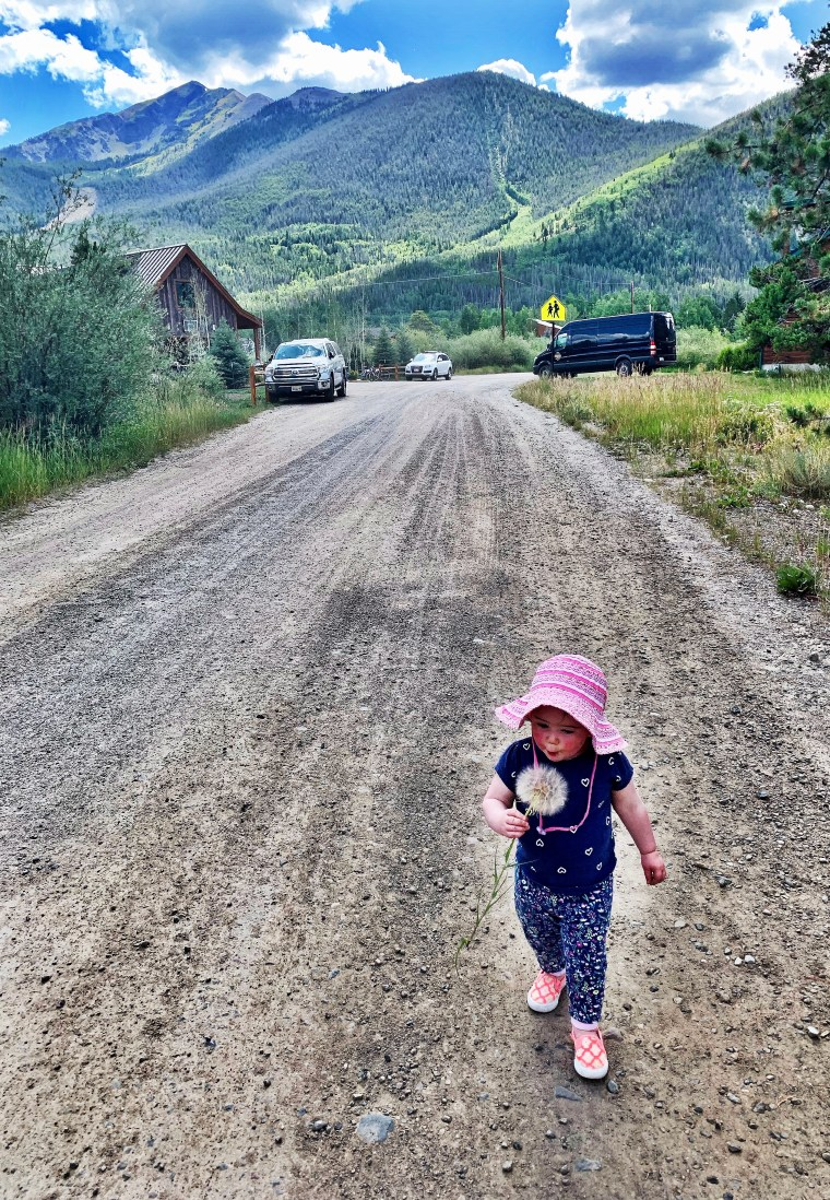 blowing dandelions in frisco, colorado