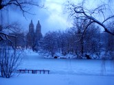 Central Park, New York City