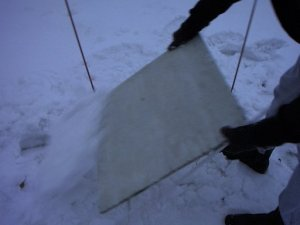 clearing off the white snowboard