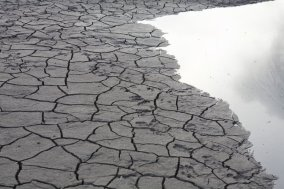 A dry riverbed with cracks in the mud