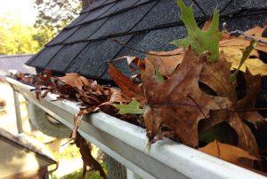 leaves in gutters e1490211754795