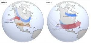 Cool-season impacts of El Niño (via NOAA).