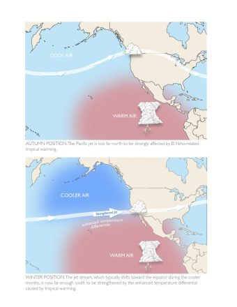 Schematic by Emily Underwood showing why the Pacific jet stream does not respond strongly to El Niño during autumn.