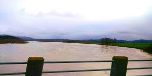 "The Eel River near Ferndale approached flood stage earlier this week. Photo courtesy of Weather West reader ""Alanstorm."""