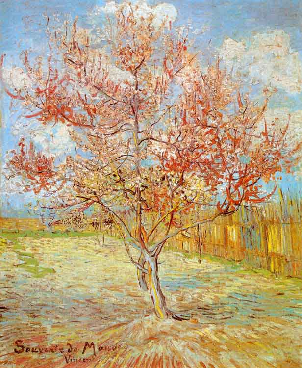 Van Gogh Peach Tree