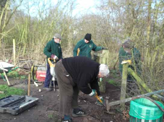 Our fabulous volunteers at work