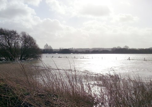 floods allotment3