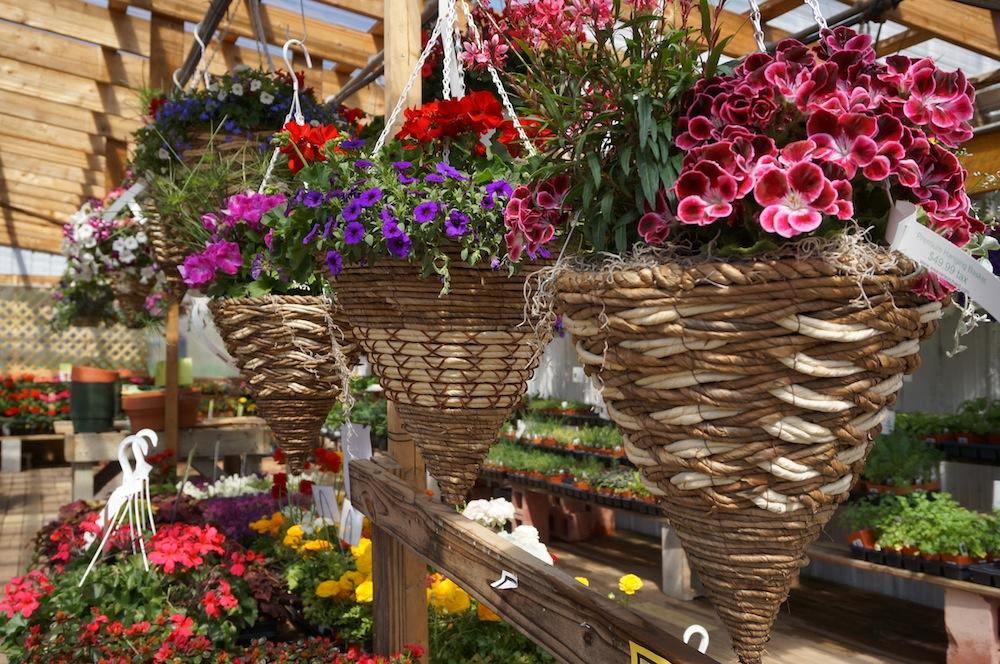 Apple Baskets Wholesale