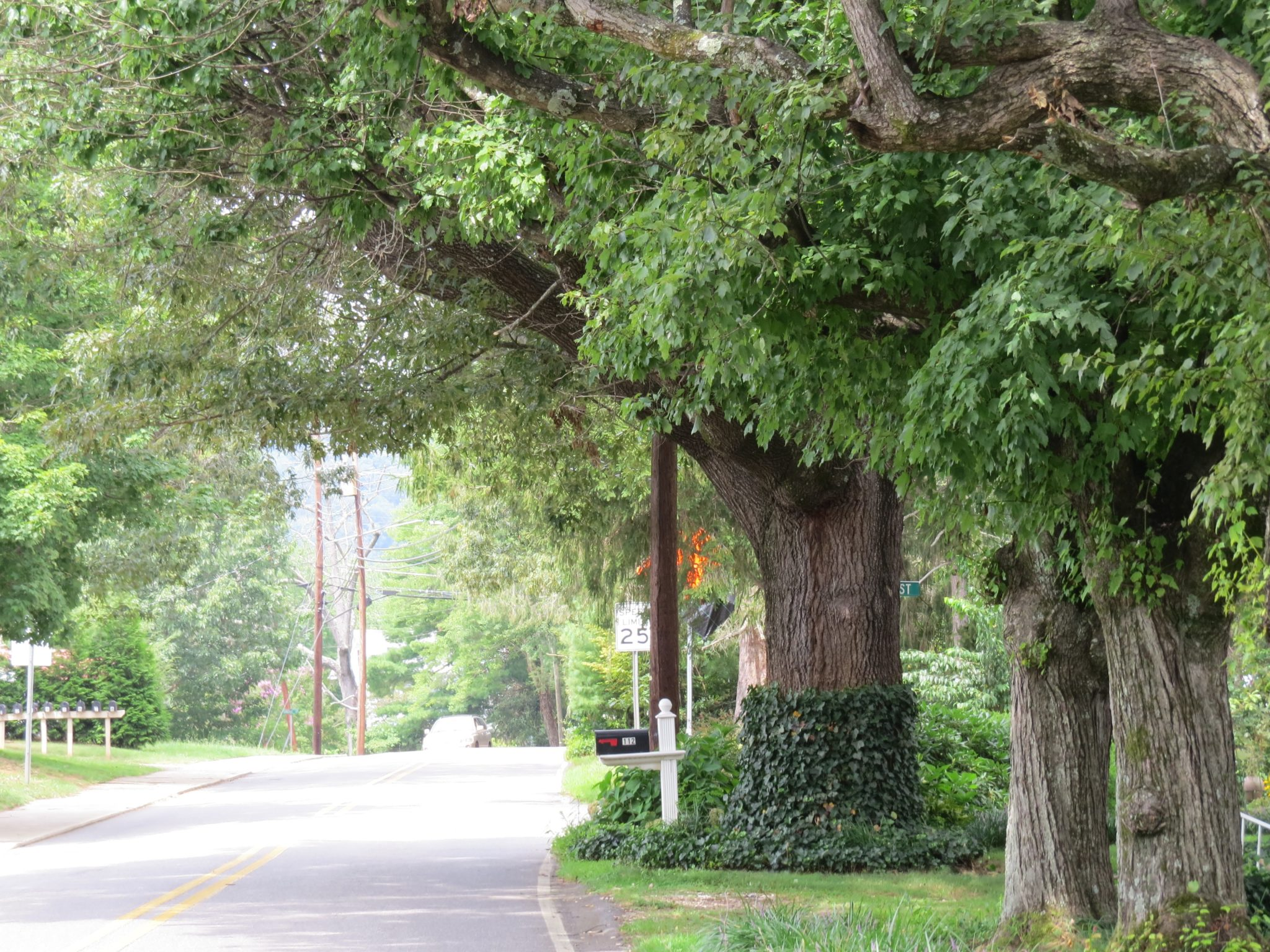 Town Of Weaverville NC Street View