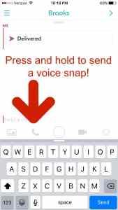 VoiceSnap