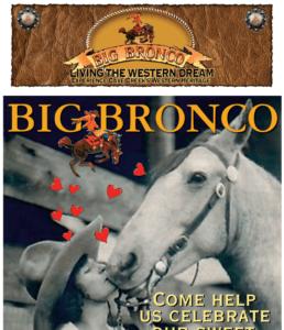 Big Bronco Cave Creek E-Mail Marketing