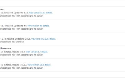 Regularly Update WordPress Plugins to Avoid Site Problems