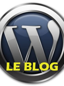 Le Blog professionnel WordPress