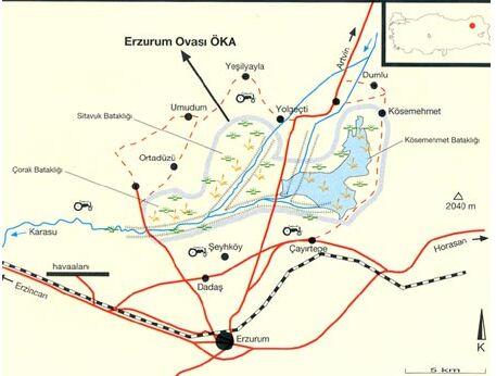erzurum birding area