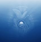 New Obama Seal?!