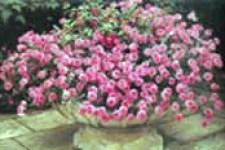 horizontal flower arrangement