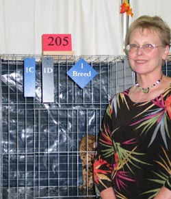 Hannah at a cat show-being judged by Vickie Fisher-091705 / 1C=1st in Color / 1D=1st in Division / 1 Breed=Best of Breed