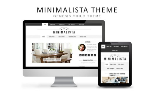 wordpress minimalist themes