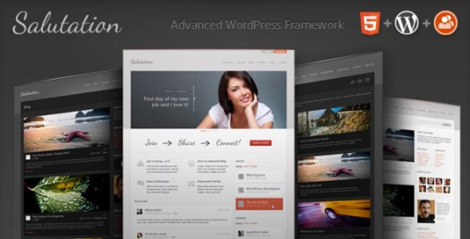 Buddypress WordPress Themes