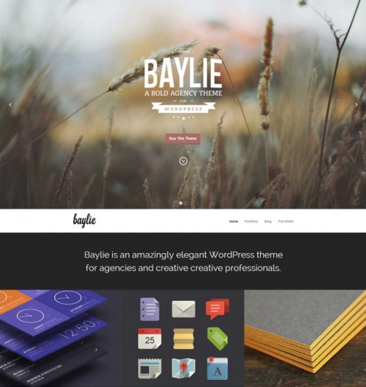 Baylie-WordPress-vcard-Theme