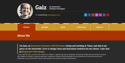 Gaiz-Premium-Vcard-Theme
