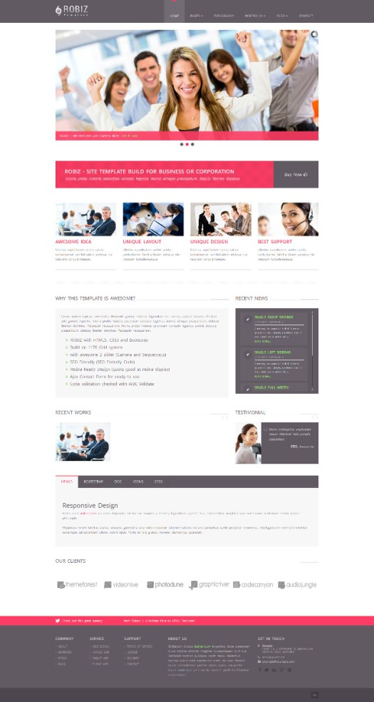 Robiz-Premium-WordPress-Theme-MultiPurpose-Responsive