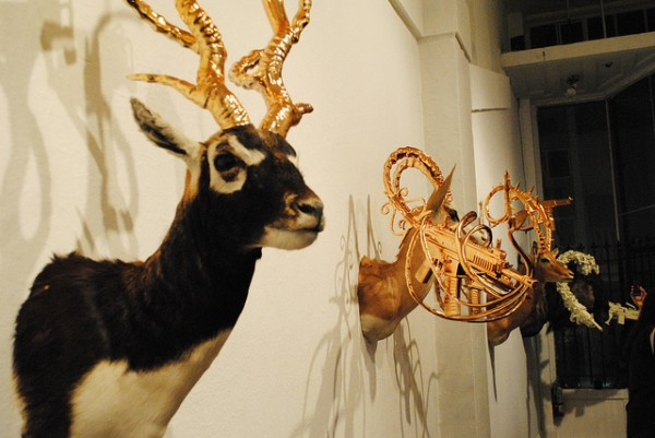 taxidermysculptures