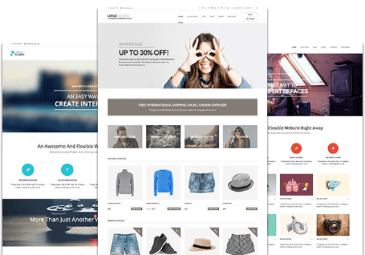 drag and drop WordPress ecommerce theme
