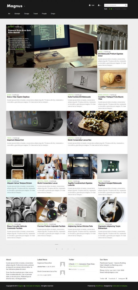 Magazine Themes For WordPress