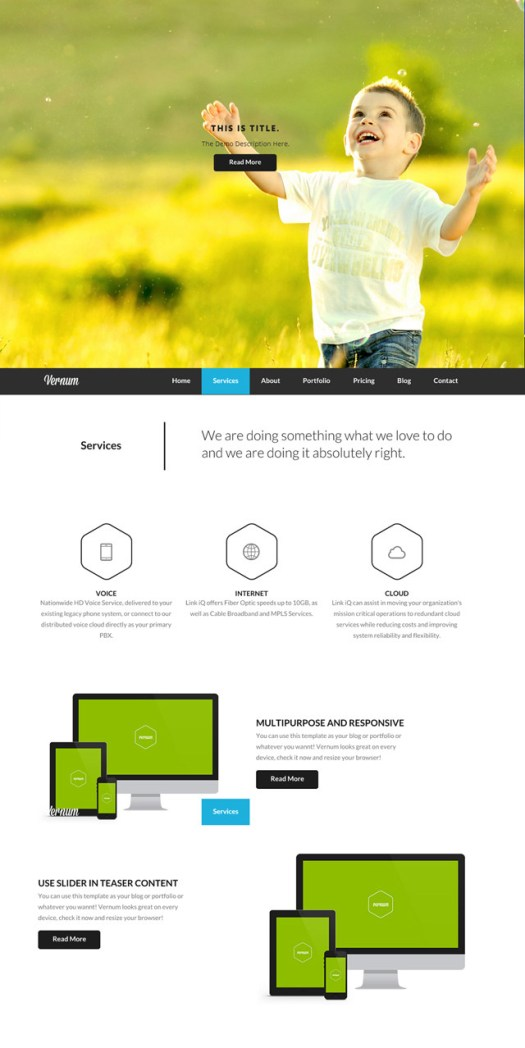 Vernum-parallax-wordpress-theme