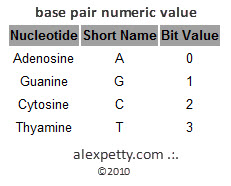 Figure 5. - Assigned numeric value for nucleic acids in DNA