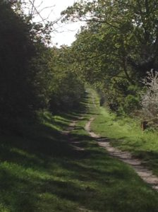 The Path to Snailwell Minster (photo by author)