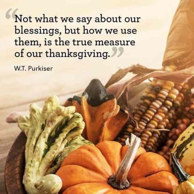 happy thanksgiving quotes for gratitude