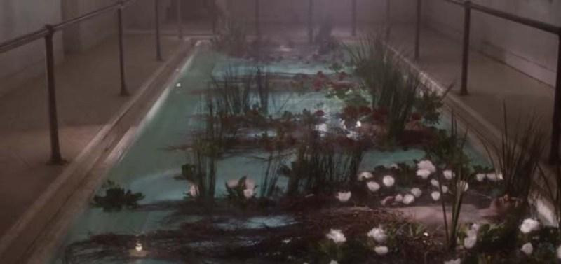 Hap's garden pool of bodies