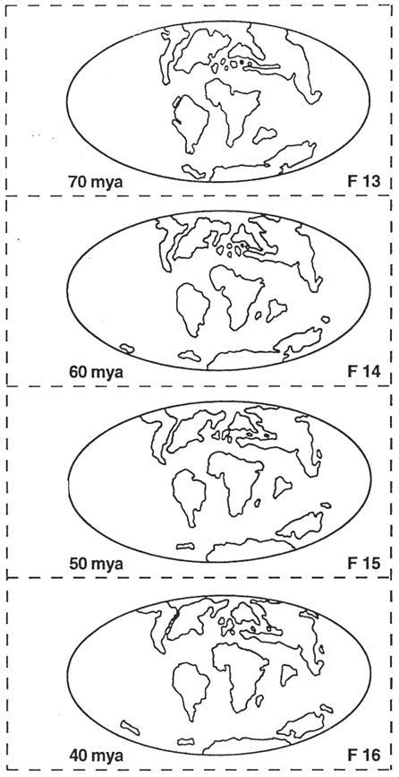 Figure 1D.