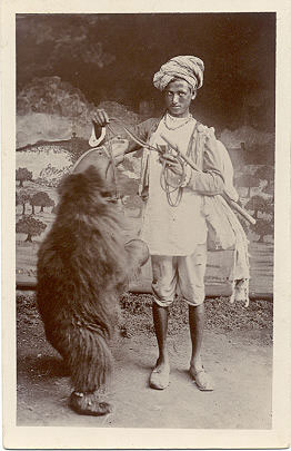 http://www.magicana.com/exhibitions/foy/Indian--Bear-Trainer.jpg