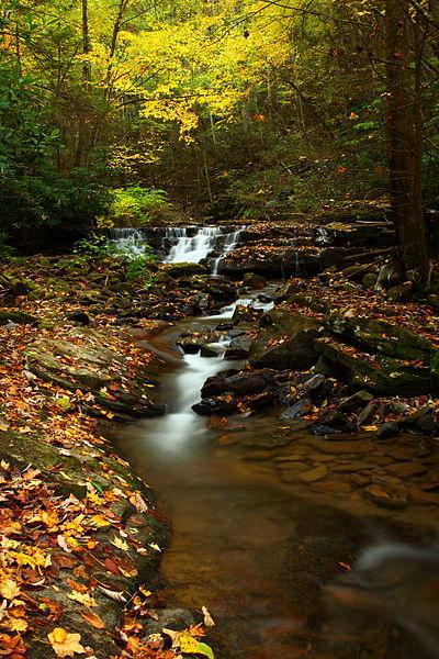 Fall Foliage Desktop Wallpaper Mass Audubon