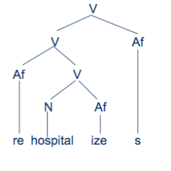 Morphology Tree Diagram Spinning Wheel Part 5 Another Way To Draw Trees Is Bring All The Branches Lines Down Same Level This Allows You See Final Whole Word On One Horizontal Line