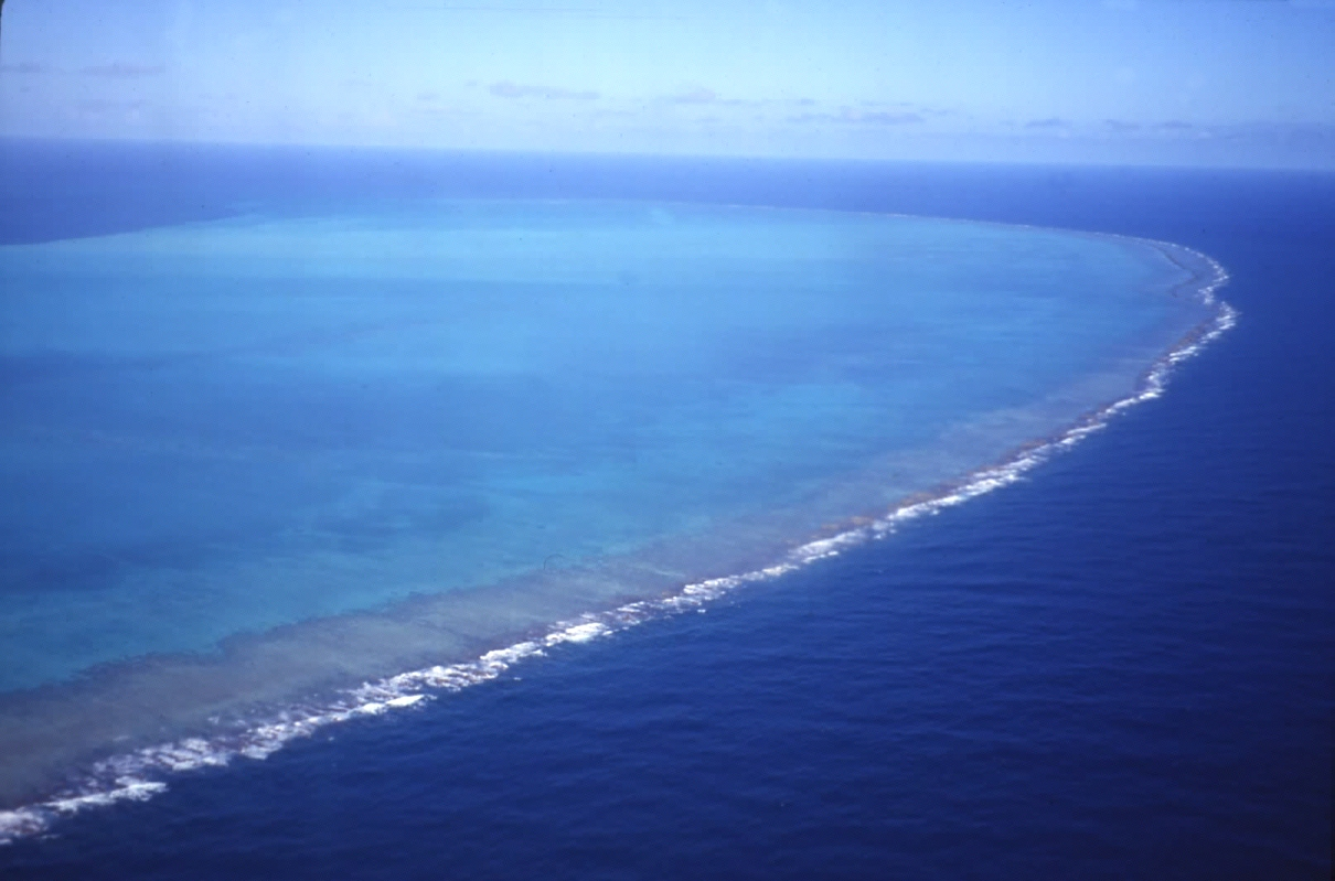 Five pacific islands vanish from sight as sea levels rise watts this will be an island eventually nvjuhfo Choice Image