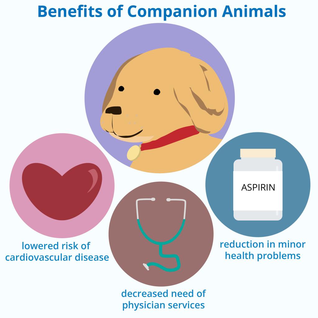 Companion Animals And Health