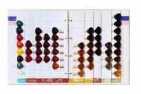 Hair color chart for salon,hair color swatch book,hair dye