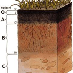 Soil Layers Diagram Towbar Electrics Wiring Eco Kids