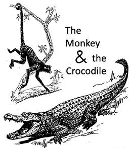 ELC Study Zone: The Monkey and the Crocodile 3