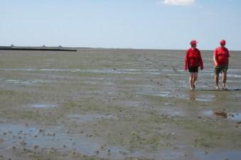 Drüben auf dem Hügel: Im Partnerlook wandert es sich gleich viel besser durch den Nationalpark Wattenmeer. Foto: Julia Marre
