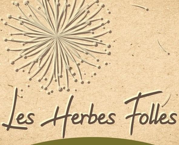 [Vidéo] Entretien avec la famille Cornuau de la ferme «Les Herbes folles» à Thuré