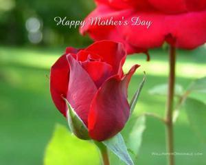 Feliz dia de las madres 2009