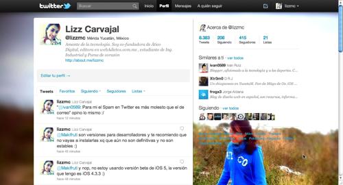 2011 06 10 18 22 34 Como hacer la barra lateral de Twitter totalmente transparente
